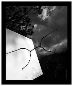 Ombra acompassada (2006).  L´ombra del paisatge  2006 - 2008. Manel Esclusa.