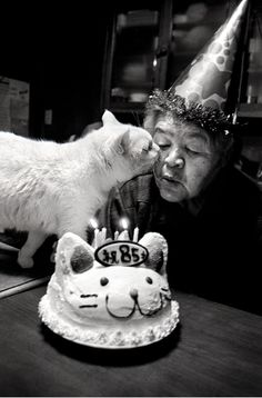 whoisthegirl: surferess: Cat loves cat lady lustik: Miyoko Ihara via Mianoti happy birthday to you happy birthady to you Happy birthday…………………………………………….. to yoooooooooooooouuuuuuuuuu