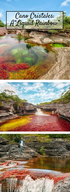 """Here's why the Caño Cristales in Colombia is called a """"Liquid Rainbow"""" Mauritius Travel, Mauritius Island, Fiji Islands, Cook Islands, Mauritius Honeymoon, Places To Travel, Places To See, Travel Destinations, Travel Around The World"""