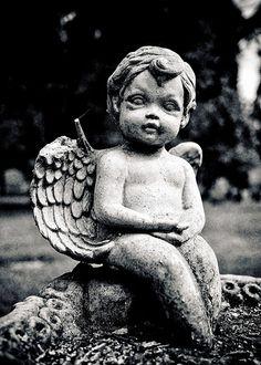 Forgotten angel  Cemetery Cherub (Putto) in the Tacoma Cemetery in Tacoma, Washington