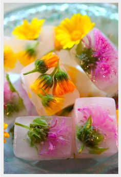 Freeze edible flowers into your ice cube trays...great for a Spring get together!