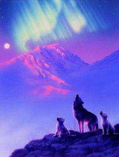 Wolves and the Northern Lights. Northern lights or Aurora Borealis is a natural light display in the night skies in the high attitude regions of the Arctic.Eskimos believed it was the dance of animal spirits. Beautiful Creatures, Animals Beautiful, Cute Animals, Aurora Borealis, Balto And Jenna, Wolves And Women, Fantasy Wolf, Fantasy Art, Wolf Stuff
