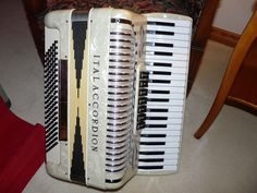 93 Best ACCORDION images in 2016   Button accordion
