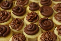 chocolate frosting comparison