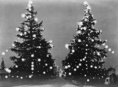 Yesterday's Print — Christmas Tree Lane, Altadena, California, 1931