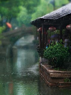 rainy day....