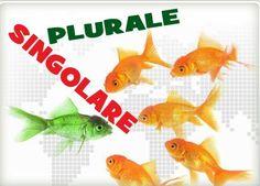 Esercizio-Exercise: il plurale dei sostantivi – Italian plural nouns (2) http://www.easylearnitalian.com/2014/03/esercizio-exercise-il-plurale-dei.html