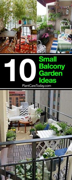 Small Balcony Garden Ideas: How To Dress Up Your Balcony Luckily, even a tiny patio or small balcony garden, can transform into a small patch of paradise.Luckily, even a tiny patio or small balcony garden, can transform into a small patch of paradise. Condo Balcony, Small Balcony Garden, Balcony Plants, Patio Plants, Modern Balcony, Balcony Gardening, Small Balconies, Small Terrace, Small Patio Gardens