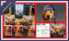 """We can't wait to see you tomorrow morning for the """"Tuesday Tucks Me In"""" Program at Barnes & Noble in Redlands, California! — with Tuesday."""