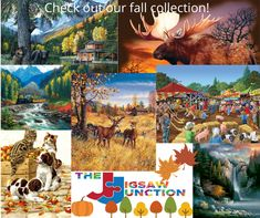 Check out some of our fall puzzles in 300, 500, 550 and 1000 pieces! Puzzle Shop, Fall Is Here, Puzzles, Check, Painting, Art, Art Background, Puzzle, Painting Art