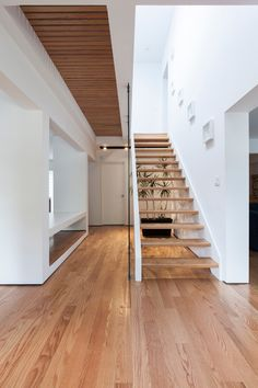 Thorax House | rzlbd; Photo: borXu Design | ArchinectEntry foyer