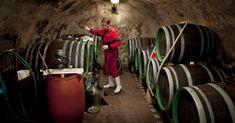 Bli kjent med viner fra Østerrike og Øst-Europa! Nye