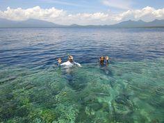 Le snorkeling sur l'ile de Menjangan