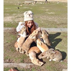 There's an island called Okunoshima in Japan filled with tame bunnies. Bunny Island, Rabbit Island, Happy Facts, Giraffe Stuffed Animal, Cute Bunny Pictures, Kawaii Bunny, Cute Creatures, Nature Animals, More Cute