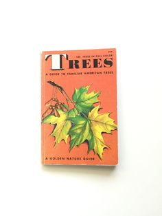 Vintage Golden Nature Guide: Trees  #bertram #bergamot #etsy #vintage #book #homeschool #golden #nature #guide #fieldguide