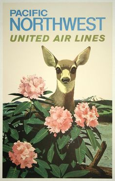 Illustrated by Stan Galli in 1960s, this vintage travel poster promotes tourism and travel to Pacific Northwest via United Air Lines.