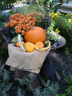 My Homespun Holiday: Fall Garden