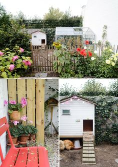Little garden with greenhouse and chicken hutch