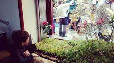 Los niños asombrados con los viejos visitantes #dinosaurio #rana en el #jardín #garden #decor #DecorAccion