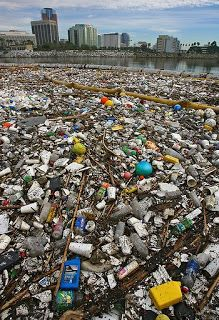 plastic gyre pacific - Google Search