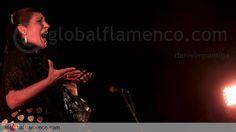 Remedios Amaya, José Mercé y Niña Pastori se disputan el Grammy Latino Flamenco 2016. Antonio Reyes & Diego del Morao con su directo y María Toledo con 'Magnética' completan el plantel de nominados de la décimo séptima edición de los premios