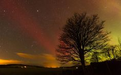 Northern Lights  (Aurora Borealis) over Carrbridge, Inverness-shire, Scotland