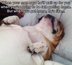 Funny Pictures Of The Day 36 Pics