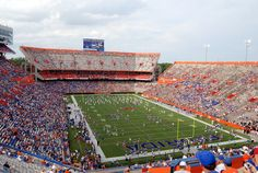 New Mexico State Aggies at Florida Gators, Vegas Online Sports Betting, September 5th 2015