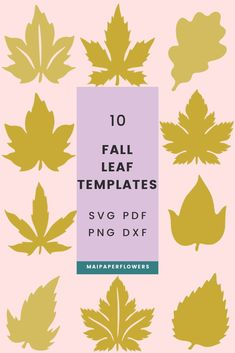 This fall leaves template Svg and printable set includes great leaf templates for small and giant paper flowers diy projects. They can be used with printers, Cricut and Silhouette. Click through to learn more!!! #fallleaftemplate #fallleavessvg #fallleavescricut #leavestemplatesvg #leavestemplatecricut #leaftemplates #giantpaperflowers #paperflowersdiy Fall Leaf Template, Leaves Vector, Giant Paper Flowers, Fall Leaves, Printers, Give It To Me, Cricut, Diy Projects, Printable