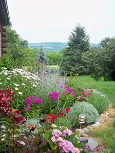 Pretty garden, Geneseo, NY