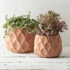 Arches Terracotta Pot - adds some good texture while staying simple! | #shopterrain #terrain