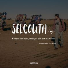 """""""Unfamiliar, rare, strange, and yet marvelous."""" Just like the word selcouth itself!:"""