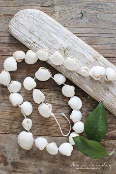 Mrs. Monday: Livstegn og en sommerlig DIY // Seashell DIY