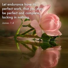 """Let endurance have its perfect work, that you may be perfect and complete, lacking in nothing.""  James 1:4 mwordsandthechristianwoman.com"