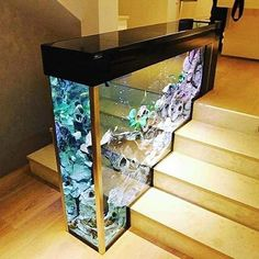 19 Aquarium Decorating Your Staircase Idea. - Best Home DesignYou are in the right place about Fishes pictures Here we offer you the most beautiful pictures about the Fishes lures you are looking for. When you examine the 19 Aquarium Decorating You