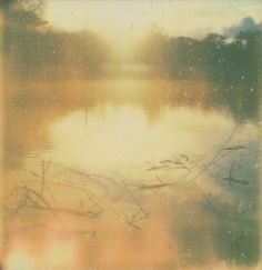 lake by Jake Messenger  Impossible Project PX 680 β-1 test film. Polaroid SLR 680. 8º C