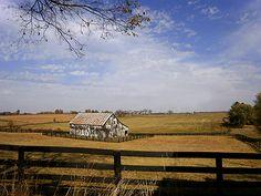 Kentucky - Lemons Mill farm view in Lexington KY by Lizette Fitzpatrick, www.lizette.us