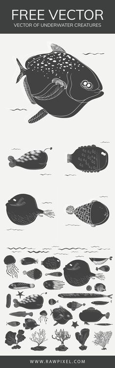 Download free vector of under the water creature at rawpixel.com Creative Banners, Creative Design, Free Vector Illustration, Illustrations, Image Fun, Black And White Design, Royalty Free Images, My Images, Design Projects