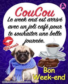 Bon Weekend, Facebook, Days Of Week, Love Pictures, Beautiful Day, Funny Animals, Adorable Animals