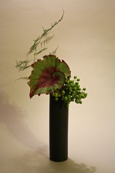 My freestyle ikebana arrangement for today with green china berries, whorled begonia leaf and plumosa fern. The berries were the starting point for the arrangement and I realy wanted to so somethi