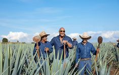 The Rock reveals Teremana Añejo - The Spirits Business Rock Johnson, Dwayne Johnson, Jumanji Actors, P Words, Dwayne The Rock, One In A Million, In Hollywood, Tequila, Things To Sell