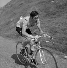 Cycling's and The Tour's greatest athlete - Eddy Merckx