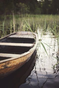 Wood row boat on a tranquil pond + vegetation + The South + Lazy Day + Country