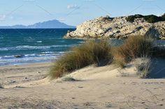 Winter Beach & Sand Dunes by QueenDesigns on @creativemarket