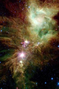 """Newborn stars, hidden behind thick dust, are revealed in this image of a section of the Christmas Tree cluster from NASA's Spitzer Space Telescope"""