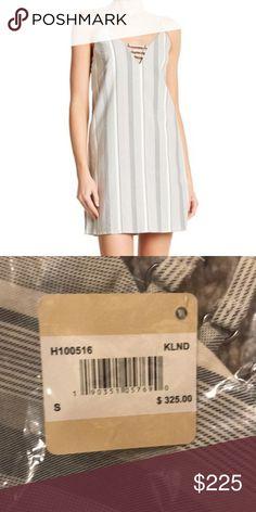 c57b561fc6dcf NWT Haute Hippie Slip Dress NWT Haute Hippie Slip Dress Grey and White  Stripes Haute Hippie
