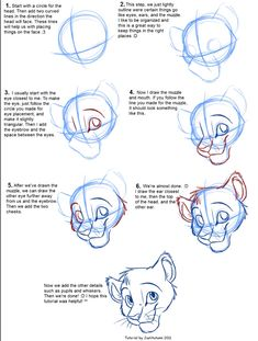 How to draw lion king lions | google search