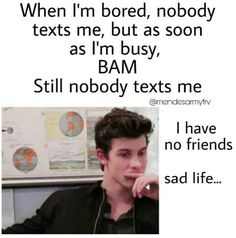 Same I have no friends But I have the Mendes Army❤