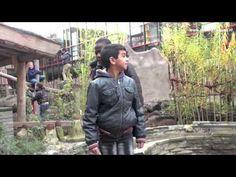 "Het Startpunt, Gezond is Vet! ""Spelen op het Groene Schoolplein is superleuk! - YouTube Vet, Leather Jacket, Denim, Youtube, Jackets, Fashion, Studded Leather Jacket, Down Jackets, Moda"