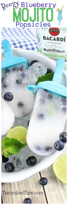 Boozy Blueberry Mojito Popsicle Recipe - Tammilee Tips